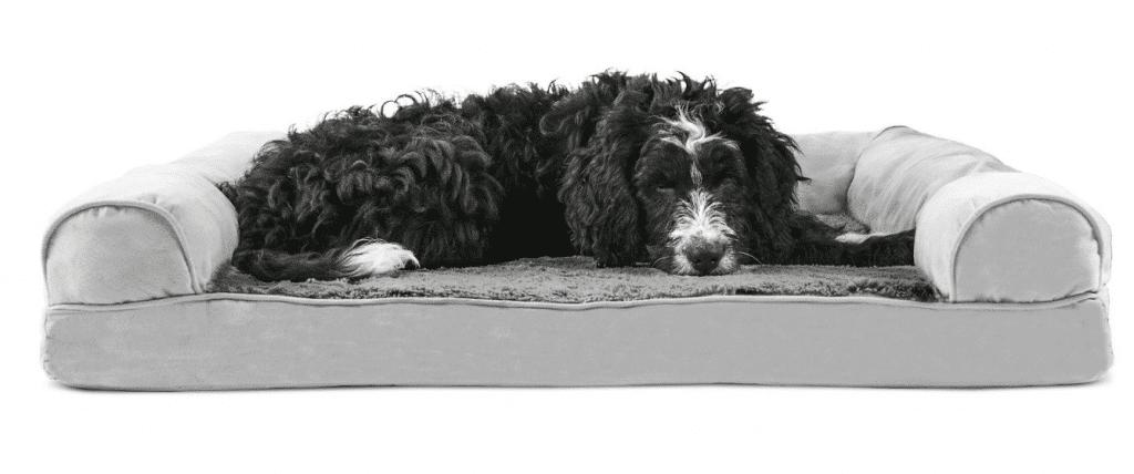 Dog Bed Black Friday Deals
