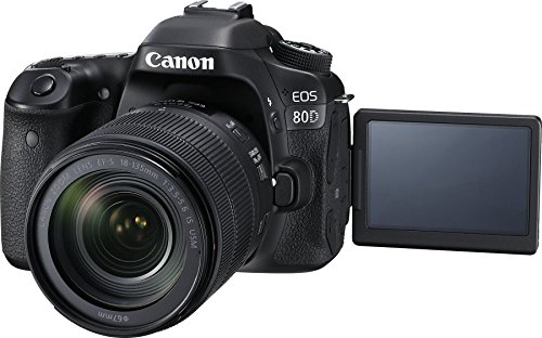 Canon EOS 80 D Black Friday Deals