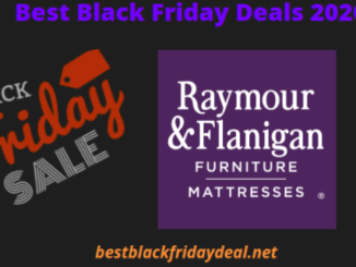 Raymour Flanigan Black Friday 2020